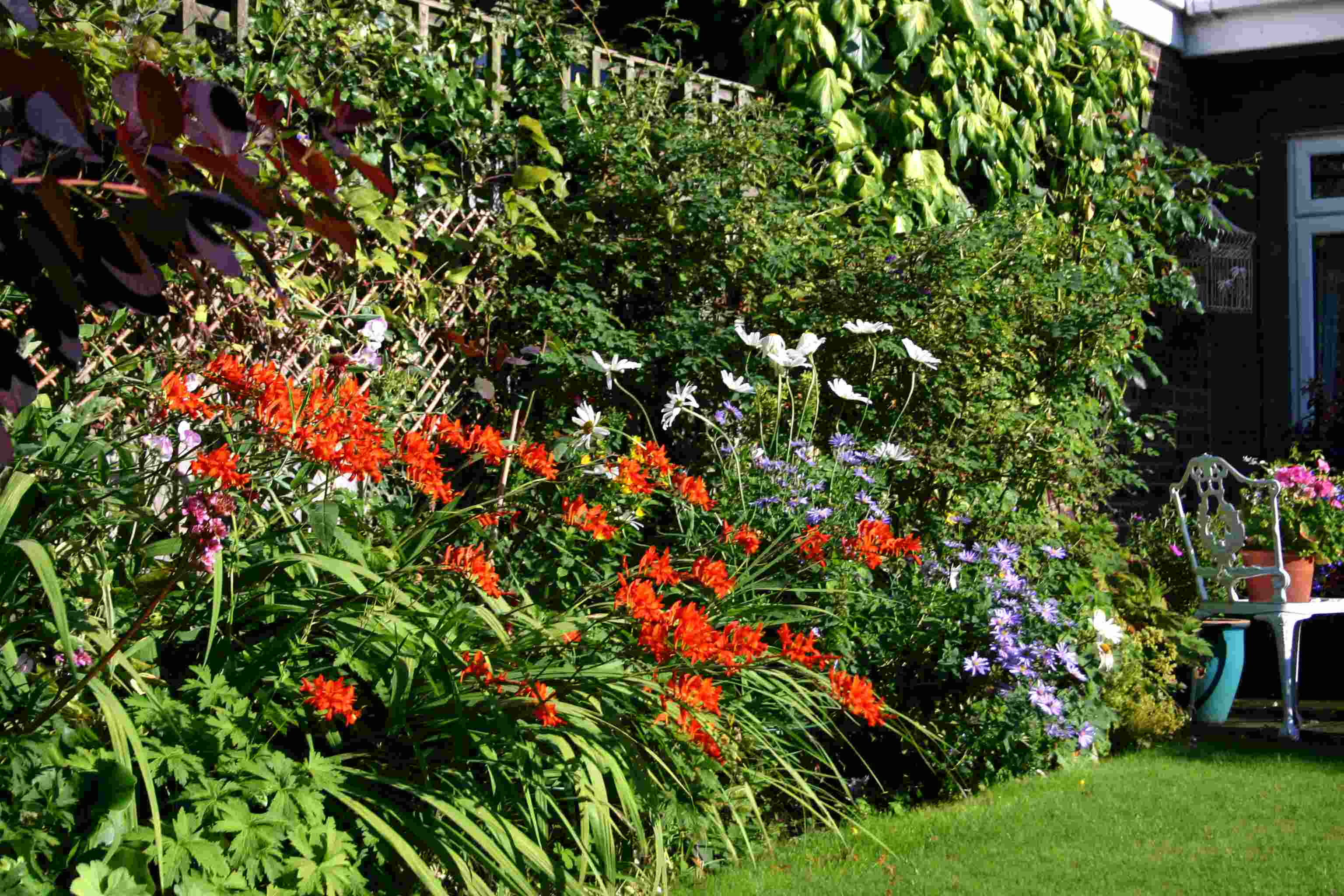 English borders words and herbs for Garden flower borders designs