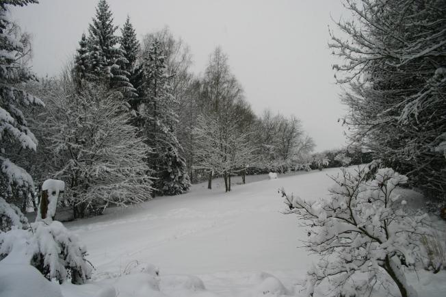 SnowThursday17thJan