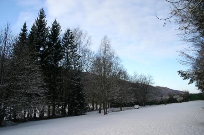 SnowyMorning2