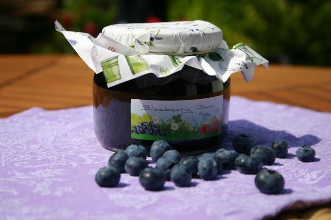 BlueberryJam1