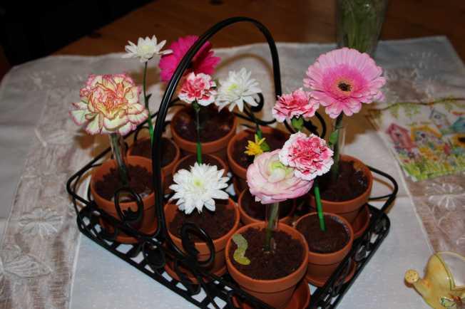 FlowerPots3
