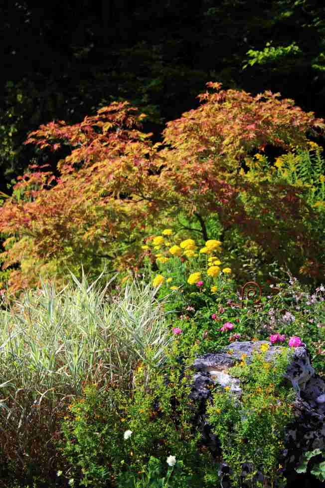 GardenReview2014August9a