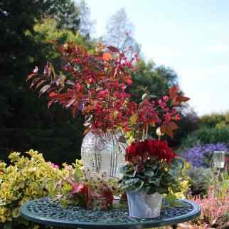 GardenReview2014September4