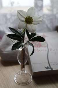 Vase2nd1