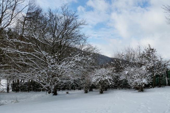 WinterFeb2nd