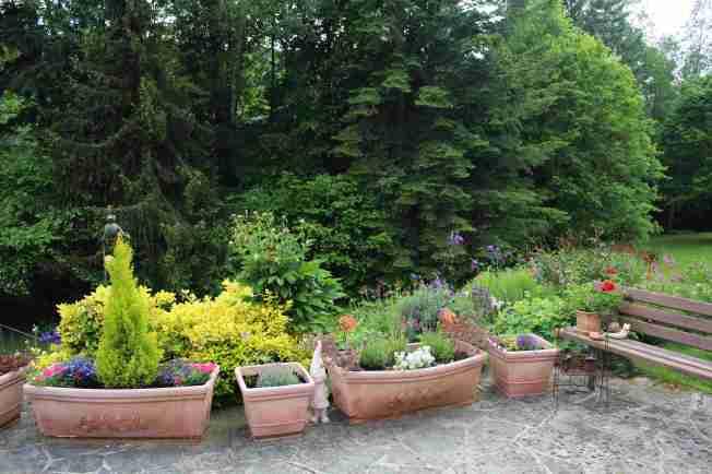 GardenWalk1