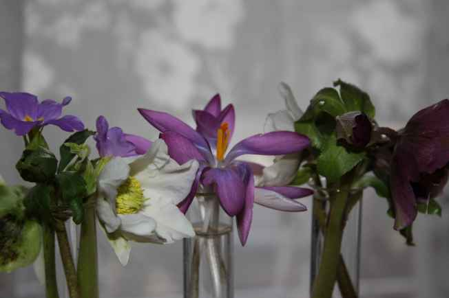 Vase15th9