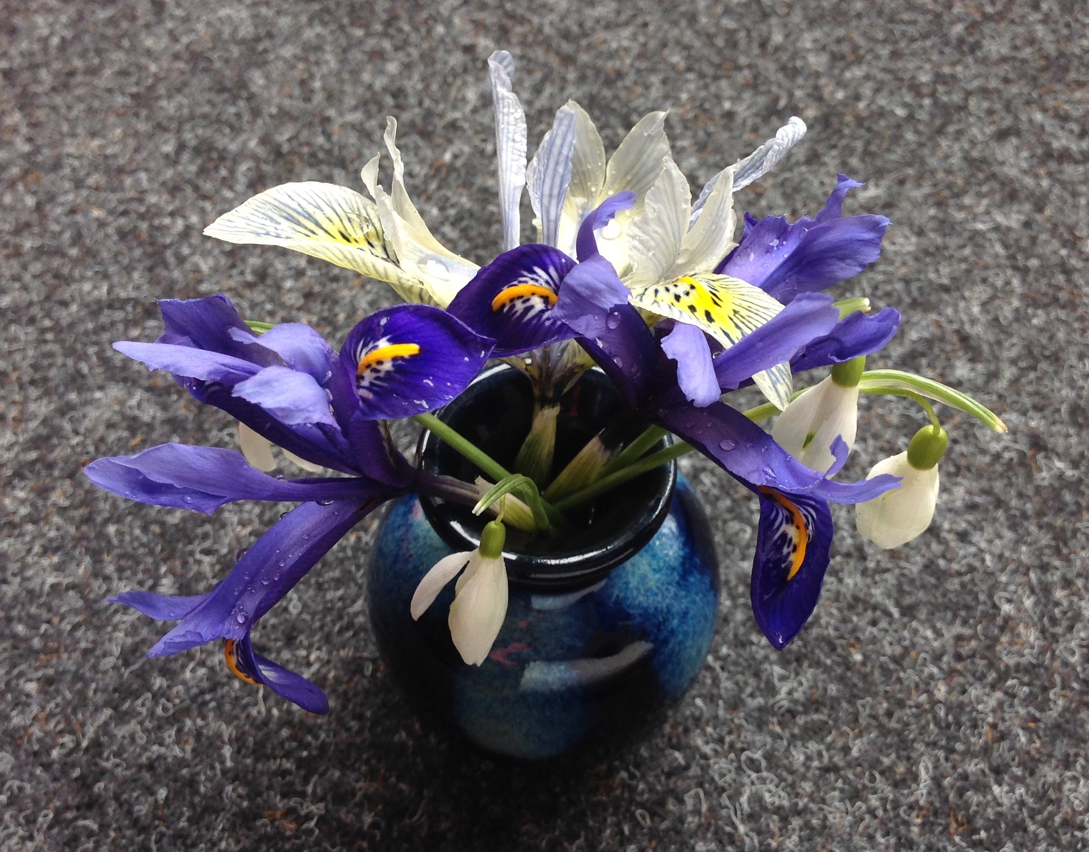 In A Vase On Monday Iris Snowdrops And Raindrops Words And Herbs